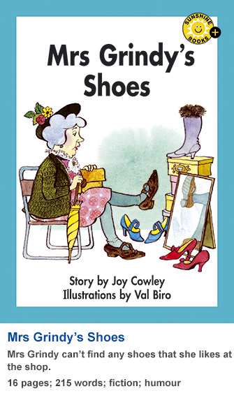 Mrs Grindy's Shoes